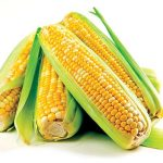 A-maize-ing workshop