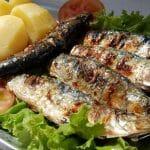 Sardine celebration
