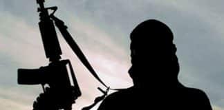 Terrorist alert - Galician terrorists sought in Northern Portugal