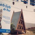 Cat shelter in Carvoeiro