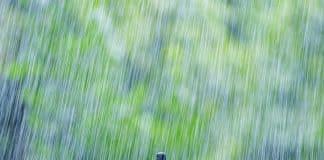 rainfall-1.jpg