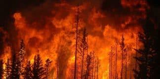 fire_risk.jpg