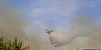 firefighting_plane_in_action.jpg
