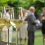 cocktail-party-garden-party-wine.jpg