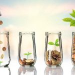 money-growth-investment-seed.jpg