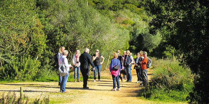 Alyson Sheldrake/Algarve Blog