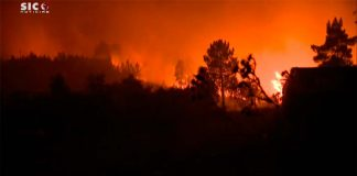 Massive fire rages in central Portugal: various injuries, one serious