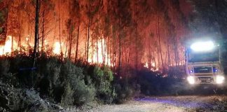 """Fires in central region: houses destroyed, at least 30 injured, """"very difficult day ahead"""""""