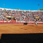 "Bullfight in Coruche ""turns into a horror film"""