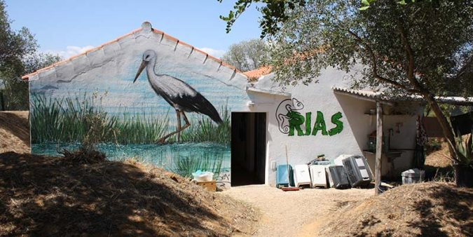 Future of Olhão's wildlife rehabilitation centre at risk