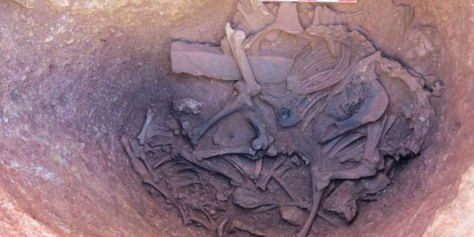 Archaeologists unearth 'new piece of history' in Silves