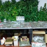 Fire-watch 'vigilance' surprises drug-traffickers