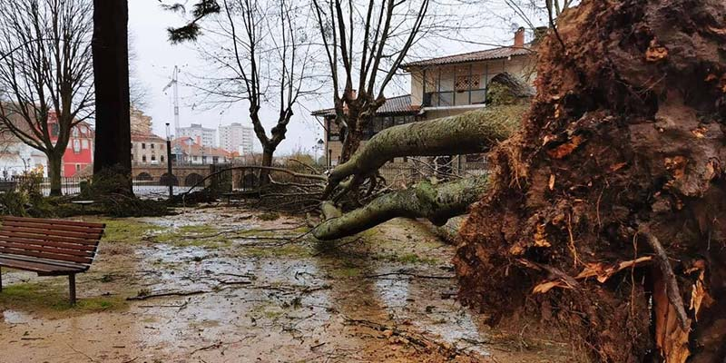 Storm Elsa batters Portugal as authorities report widespread damage
