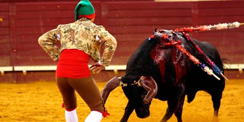 Bullfighters join 'cultural demo' planned for December 10