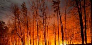 """Where's the money going?"" Accounts Court slates councils' fire prevention 'plans'"