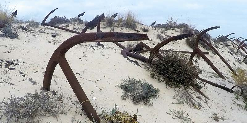 Praia do Barril Trail, Tavira