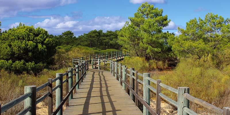 Aldeia Nova Interpretation Trail, Monte Gordo