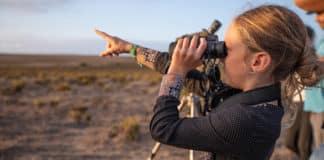 Birdwatchers to descend on Sagres again in October