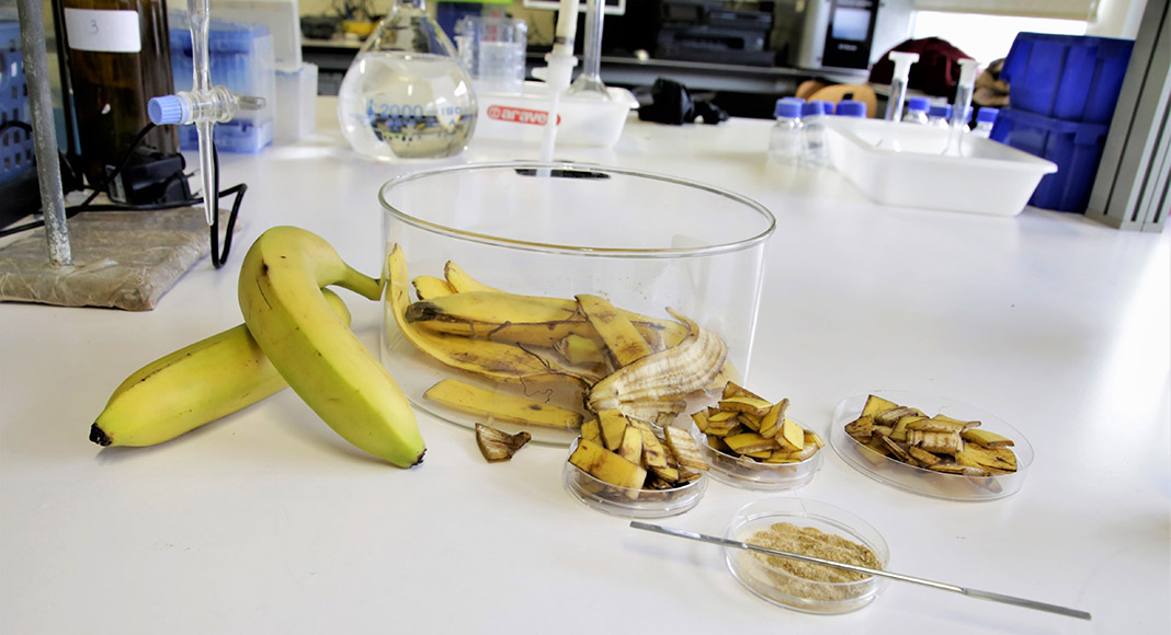 Aveiro scientists discover banana skins can clean water