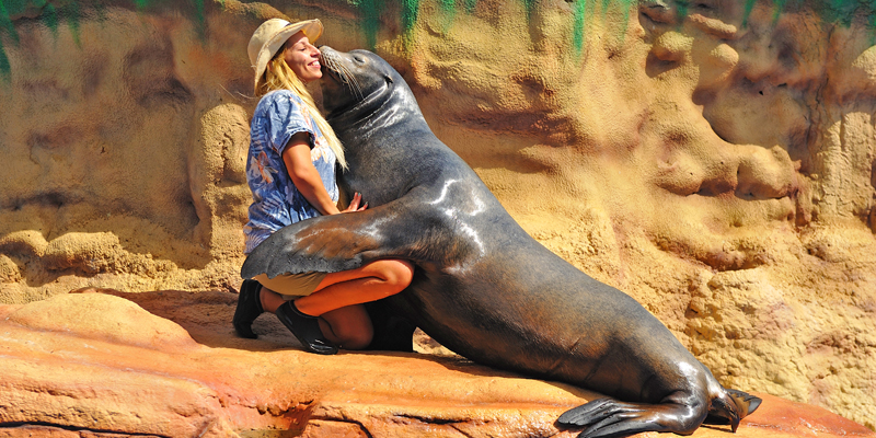 A seal giving a kiss to one of its trainers at Zoomarine