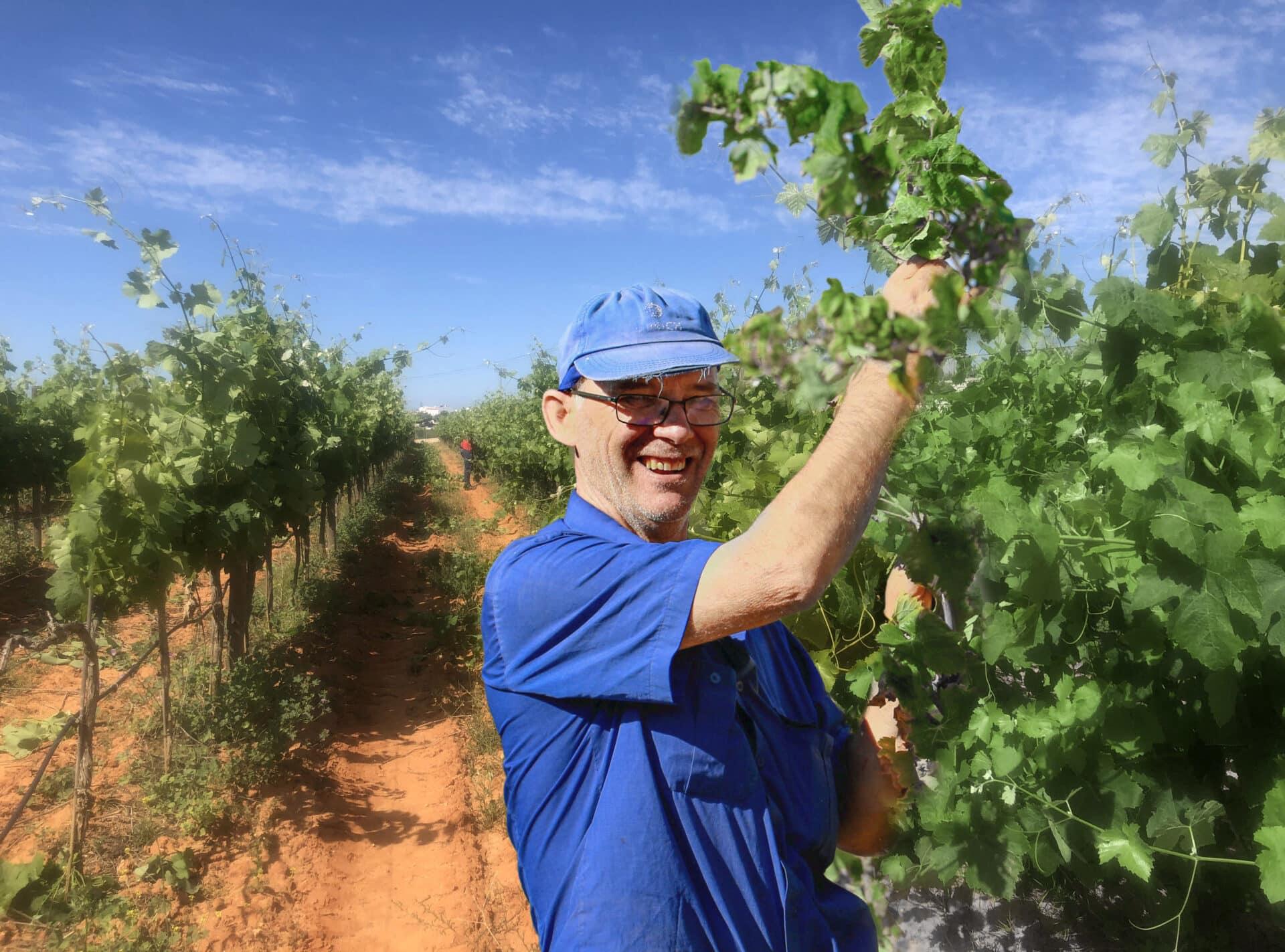Quinta dos Vales Manuel Winemaker Pick